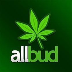 allbud com (allbud) on Pinterest