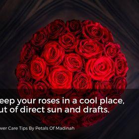 Petals Of Madinah