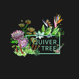 Quiver Tree Self- Catering Apartments