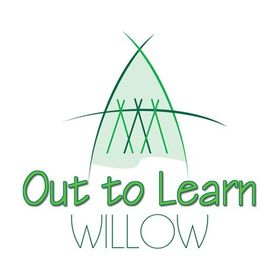 Out to Learn Willow