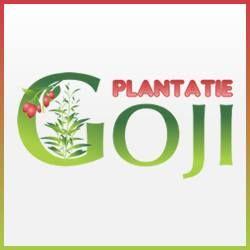 Plantatie Goji