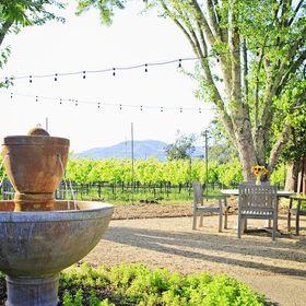 55 Best Wine Country Garden Images Garden Country Gardening Plants