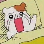Hyung Jin Roh