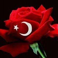 Suna İstanbullu Geyikci