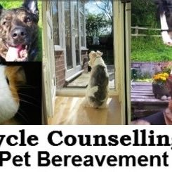 cycle counselling