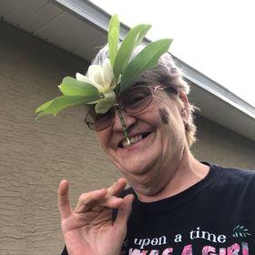 Phyllis