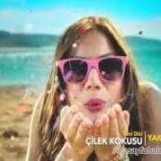 ELİF ECE