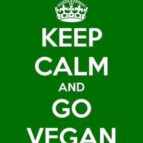 Vegan Food