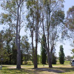 Kahlers Oasis Caravan Park