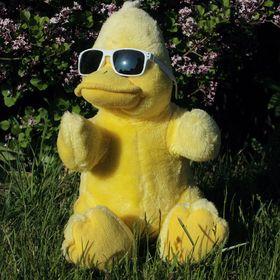 Big B - Big Bird aus Beckum