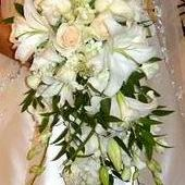 Palomino Floral Designs Inc