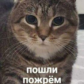 Olya Plat