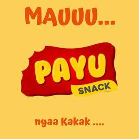 PAYU FOODS