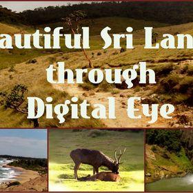 Beautiful Sri Lanka Blog
