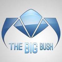 Thebigbush Tbb