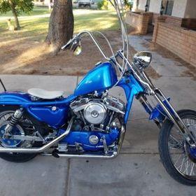 Harley Davidson Motorcyle News