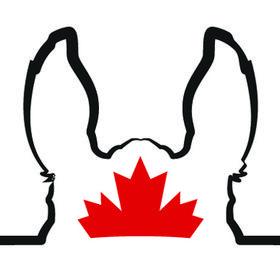 Horse-Canada