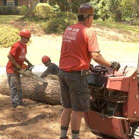 Todd's Marietta Tree Service