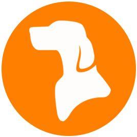 Peterpup | Dog Training Tips & Dog Care + Best Hypoallergenic Dog Breeds