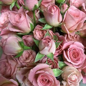 Wholesale Florist Direct