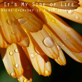 It's My Side of Life