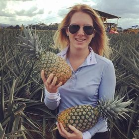 Passports & Pineapples