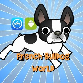 French Bulldog World