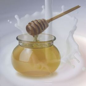 The Milk and Honey Store