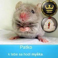 Patrik Papay
