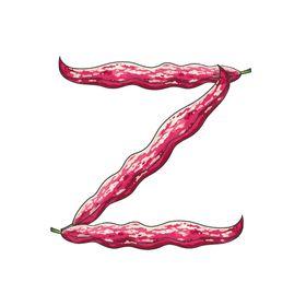 Zoe's Garden Prints