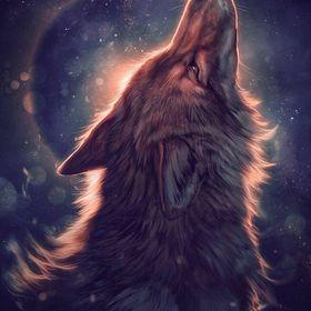 Darkwolf5411