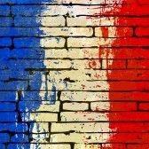 Traduzione Francese.net