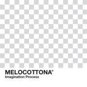 Melo motiongraphics
