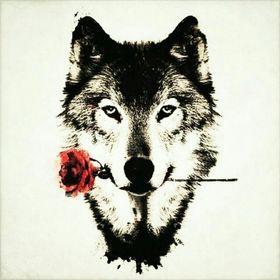 Wolf Berghof