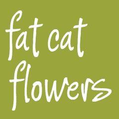 Fat Cat Flowers