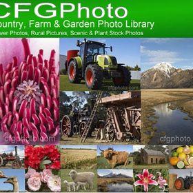 Country, Farm & Garden