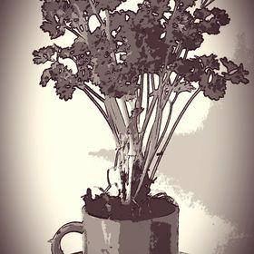 The Herbal Teacup