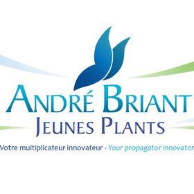 André Briant Jeunes Plants ®