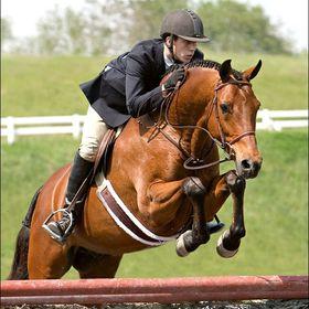 Horse Girl 1