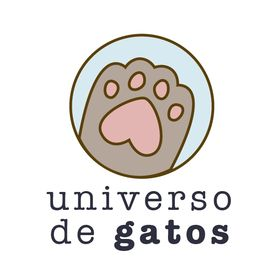 Blog Universo de Gatos