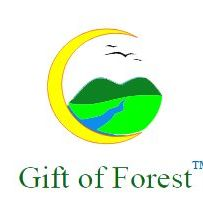 Gift of Forest