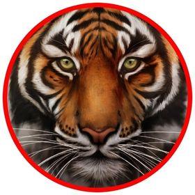 Glass Tiger Tinting