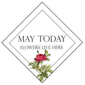 May Today