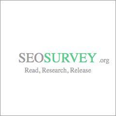 seo surveys