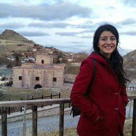 Elican Boyraz