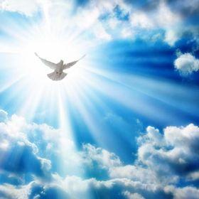 Cuerpo definido Nuestro cuerpo es templo do Espirito 🙏