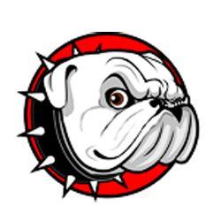 Sports Fan Dog Collars