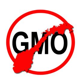 Norge mot GMO
