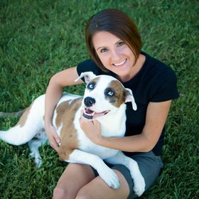 DogStreet Pet Photography