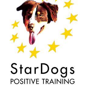 StarDogs Positive Training